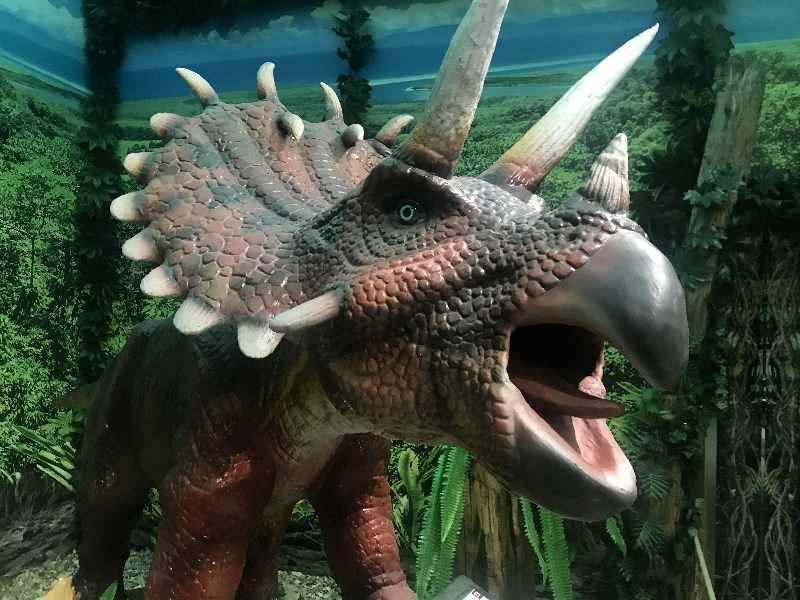 Dinoland Vomp