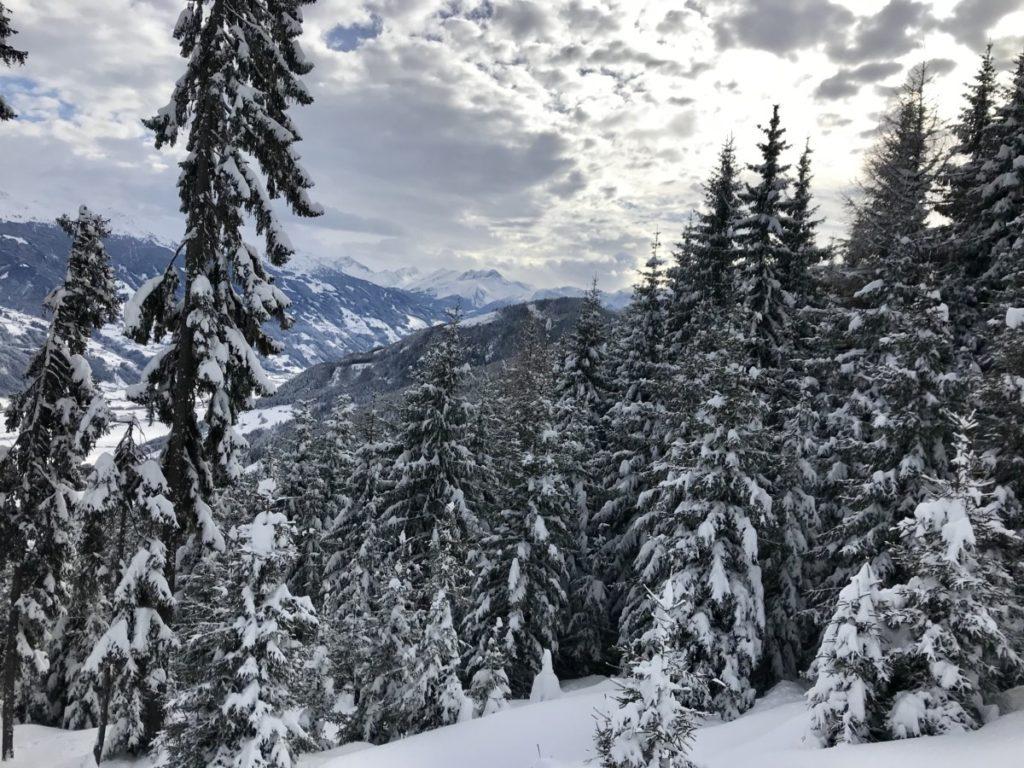 Skitour Innsbruck - wohin?