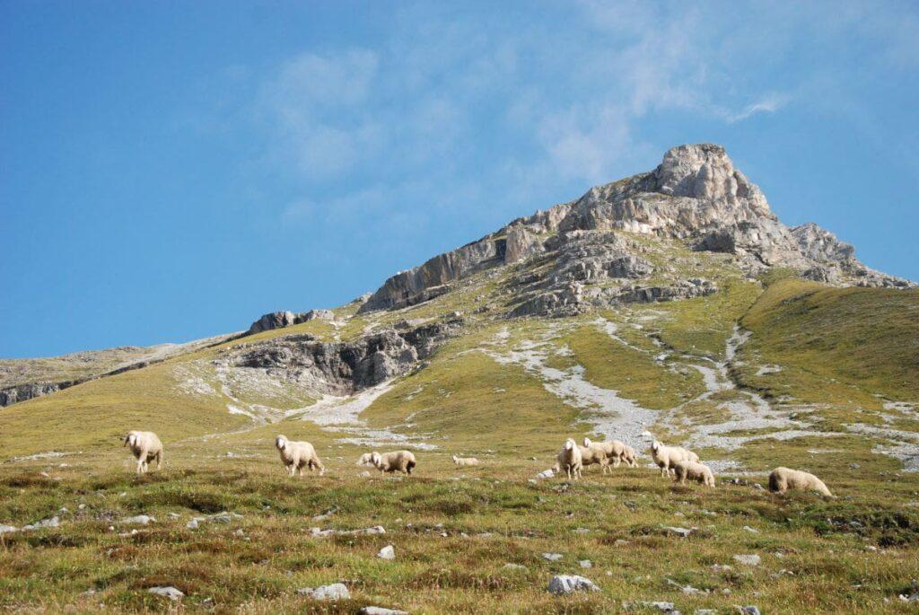 Die Serles - einer der meistbesuchten Innsbruck Berge